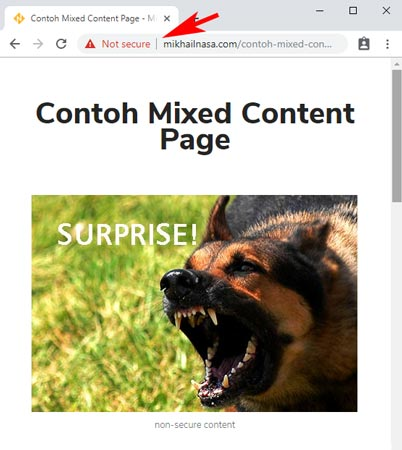 contoh-mixed-content-page-2